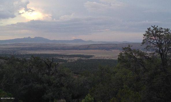 487 Sierra Verde Ranch, Seligman, AZ 86337 Photo 21