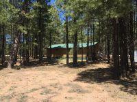 Home for sale: 1986 Az-260 --, Forest Lakes, AZ 85931