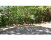 Home for sale: Chestnut Rd., West Roxbury, MA 02132