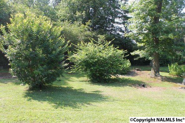 1210 County Rd. 23, Geraldine, AL 35974 Photo 34