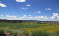 Home for sale: 0 Cr 496, La Jara, NM 87027