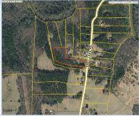 Home for sale: 3175 E. Lake Rd., Mcdonough, GA 30252