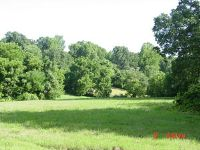 Home for sale: Lot Mockingbird Ln., Crane, MO 65633