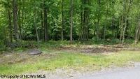 Home for sale: 209 Woodside Ln., Bridgeport, WV 26330