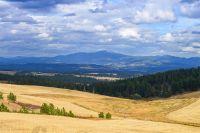 Home for sale: 16223 N. Dalton, Spokane, WA 99208