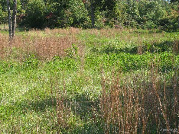 Smith Mountain Rd., 97 Acres, Jasper, AR 72628 Photo 5