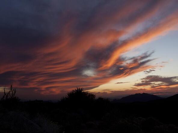11073 E. Tamarisk Way, Scottsdale, AZ 85262 Photo 10
