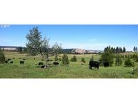 Home for sale: 70281 Merritt Ln., Elgin, OR 97827