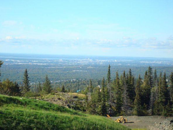 L8 Southpointe Bluff Dr., Anchorage, AK 99516 Photo 7