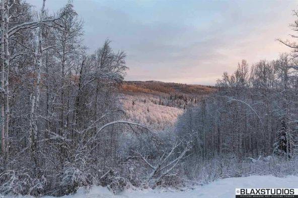 1150 Amanita Rd., Fairbanks, AK 99712 Photo 19