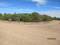 Home for sale: Lot 18 Cr N3098, Vernon, AZ 85940