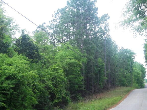500 South Rd., Atmore, AL 36502 Photo 13