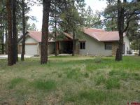 Home for sale: 405 Bear Cub Dr., Ridgway, CO 81432