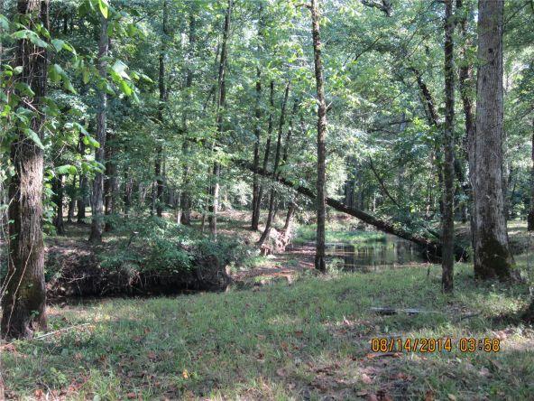 1865 County Rd. 99, Gaylesville, AL 35973 Photo 41