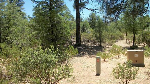 509 N. Chaparral Pines Dr., Payson, AZ 85541 Photo 2