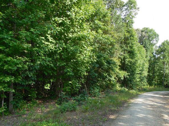 20+/- Acres Hwy. 431, Roanoke, AL 36274 Photo 6
