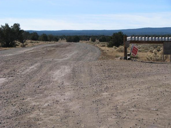 80 Cattle Dr., Ash Fork, AZ 86320 Photo 20