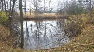 27.55 Acre State Hwy. 32, Sheboygan Falls, WI 53085 Photo 12