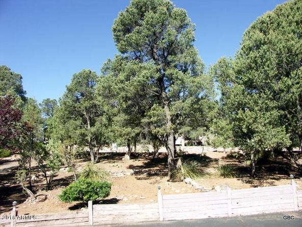 1103 N. Hillcrest Dr., Payson, AZ 85541 Photo 6