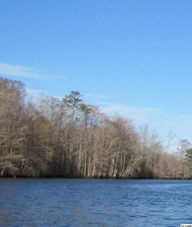 Lot 2 Meredith Ct., Myrtle Beach, SC 29588 Photo 7