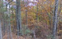 Home for sale: Lt300 Oberlin Ct. N.E., Ranger, GA 30734