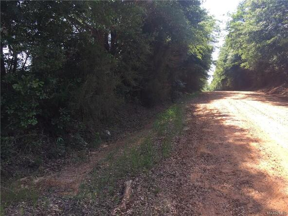 4 County Rd. 225 ., Jack, AL 36346 Photo 9