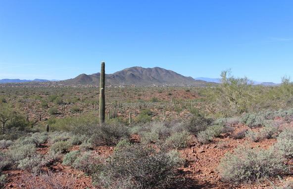 41000 N. 7th St., Phoenix, AZ 85086 Photo 10