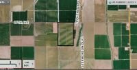 Home for sale: 100 Acres On 20th Ave., Blythe, CA 92225