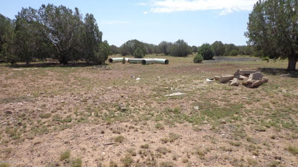 261 Juniperwood Ranch Lot 261, Ash Fork, AZ 86320 Photo 63