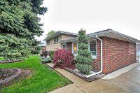 Home for sale: 8213 South Ferdinand Avenue, Bridgeview, IL 60455