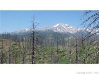 Home for sale: 4129 Pyramid Mountain Rd., Cascade, CO 80809