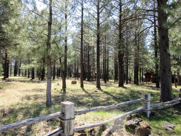 4621 Buck Springs Rd., Pinetop, AZ 85935 Photo 12