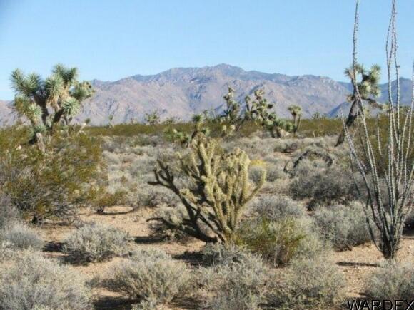3529-B Arroyo Rd., Yucca, AZ 86438 Photo 23