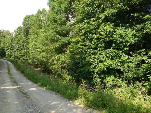 20+/- Acres Hwy. 431, Roanoke, AL 36274 Photo 1