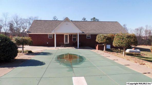 278 County Rd. 557, Grove Oak, AL 35975 Photo 20