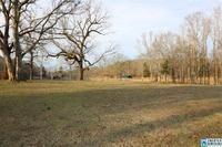Home for sale: 215 Anderson Mtn Dr., Odenville, AL 35120