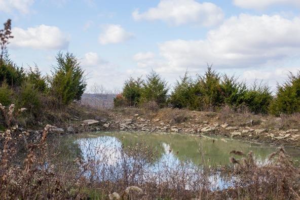 4417 Dry Branch Rd., Lexington, KY 40515 Photo 5