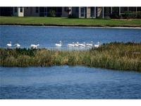 Home for sale: 6861 74th St. Cir. E., Bradenton, FL 34203