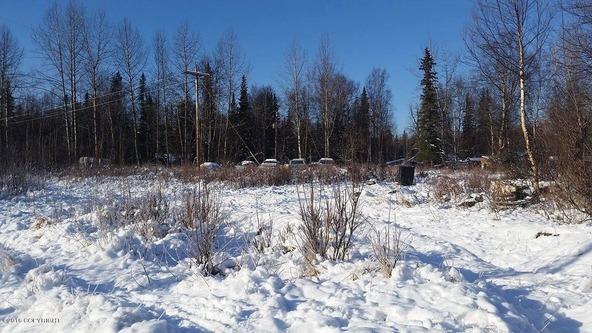6321 N. Moose Meadows Rd., Wasilla, AK 99654 Photo 4