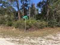 Home for sale: Millrock St., Webster, FL 33597