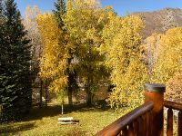 Home for sale: 109 S. Little Texas Ln., Woody Creek, CO 81656