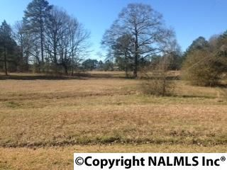 3787 Smith Rd., Southside, AL 35907 Photo 7