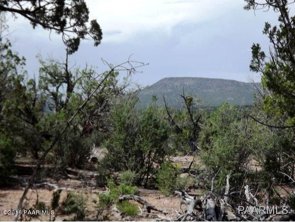 1449 Off Of Big Dip Rd., Seligman, AZ 86337 Photo 10