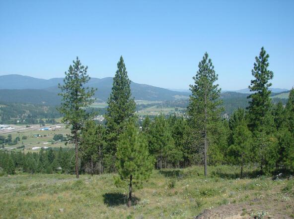 740 C Arden Butte Rd., Colville, WA 99114 Photo 11