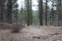 Home for sale: Lot 5 Garden Springs, Centerville, ID 83631
