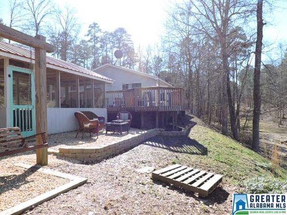 363 Wedowee Creek View Dr., Wedowee, AL 36278 Photo 11