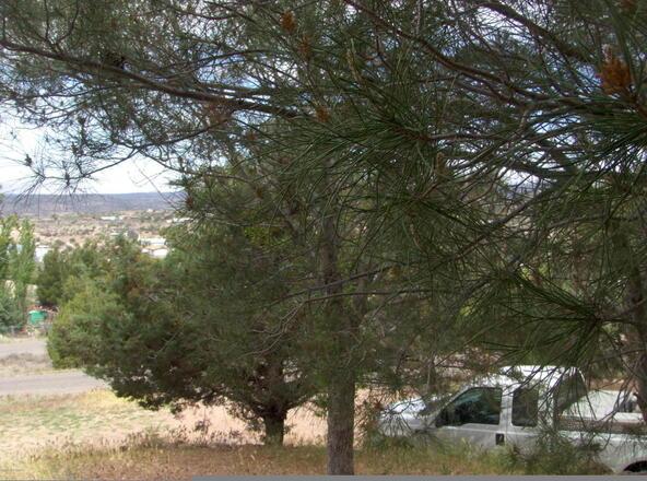4805 N. Pow Wow Pass, Rimrock, AZ 86335 Photo 5