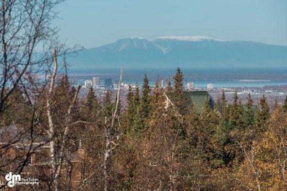 9720 Basher Dr., Anchorage, AK 99507 Photo 1