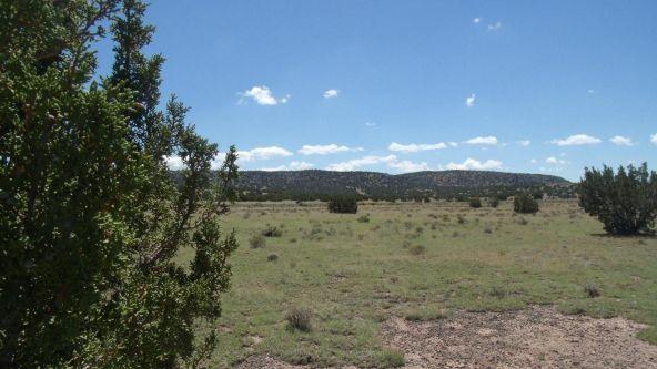 11116 S. State Route 64, Williams, AZ 86046 Photo 3