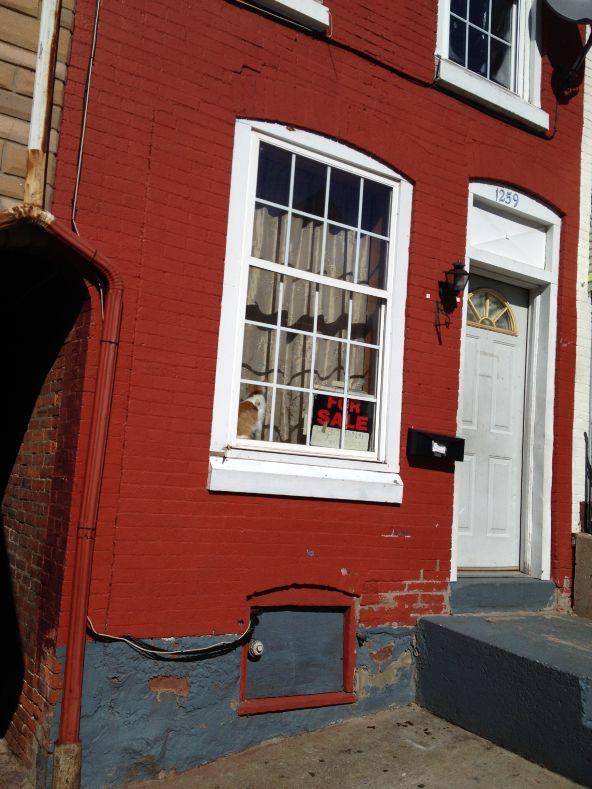 1259 Buttonwood St., Reading, PA 19604 Photo 10